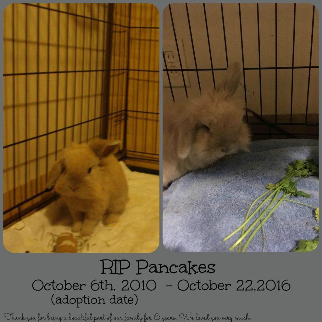 rip-pancakes